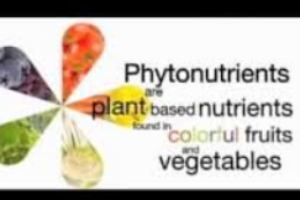 phytochemicals-how-to-prevent-cancer-cindy-bartz